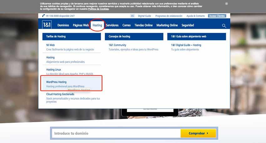 pasos contratar hosting wordpress carlosmarca especialista barcelona